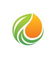 organic bio leaf logo vector image vector image