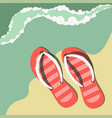 striped flip flops on sand near water summer vector image