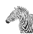 abstract zebra silhouette with grunge vector image vector image