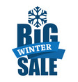 big winter sale inscription vector image