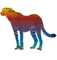 Cheetah - abstract rainbow
