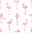 pink flamingos seamless pattern beautiful vector image vector image
