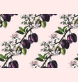 seamless pattern with hand drawn plum branches vector image vector image