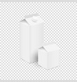 white blank carton boxes for juice and milk vector image