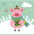 card happy new year pig vector image