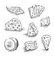 cheese isolated on a white background hand drawn vector image vector image