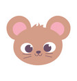 cute mouse animal face cartoon isolated design vector image