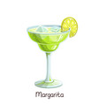 margarita cocktail with lime vector image vector image