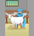muslim farmer milking his goats at barn vector image vector image