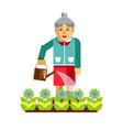 grandmother watering flowers in the garden vector image