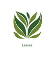 green leaves trees and plants elements for eco vector image vector image