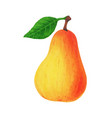 realistic yellow pear with leaf isolated on white vector image