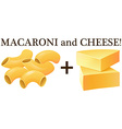 Raw macaroni and cheese vector image