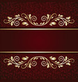 elegant background with lace ornament and place vector image