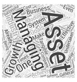 Achieving Successful Asset Management Growth Word vector image