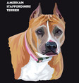 american staffordshire terrier colorful portrait vector image vector image