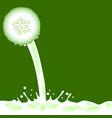 green slice cucumber vector image