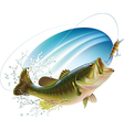 Largemouth bass catching bite