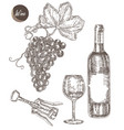 wine set hand drawn a bottle of wine a glass a vector image vector image