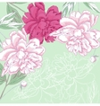 Background with white and pink peony vector image