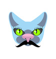Blue Cat with big mustache Pet hipsters icon logo vector image