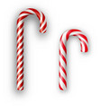 candy canes isolated on white vector image