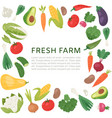 farm vegetable frame fresh vector image