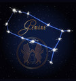 gemini astrology constellation of the zodiac vector image vector image