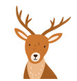 head funny young deer with horns portrait vector image vector image