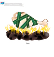 Lovo Fijian Meat Cooked on Heated Stones vector image