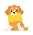 postal dog puppy vector image