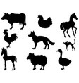 domestic animals vector image vector image
