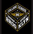 college brooklyn vector image