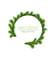 decorative circle design with pine branches for vector image