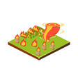 fire and tornado natural disaster icon vector image