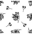 seamless pattern with black and white hawthorn vector image vector image