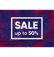 summer sale banner with exotic jungle plant vector image