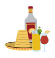 tequila mexican drink vector image