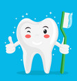 a healthy tooth holds a toothbrush shines with vector image