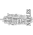 bay of naples italy text word cloud concept vector image vector image