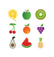 colorful fruit logo icon template vector image vector image
