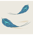Colorful hand drawn feathers isolated vector image vector image