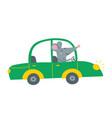 cute rat driving green car vector image