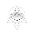 divine beauty premade logo design black butterfly vector image vector image