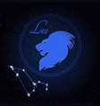 leo astrology constellation of the zodiac vector image