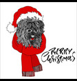 new year card with fluffy dog in santa claus red vector image