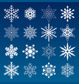 set of winter snowflakes vector image vector image