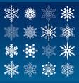 set winter snowflakes vector image vector image