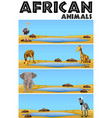 african animals by the pond vector image