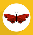 beutiful butterfly vector image